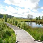 The boardwalk on Cors Caron